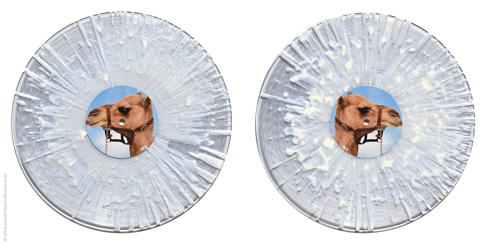 Frenzal Rhomb Punk Vinyl Collector